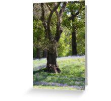 Dream Trees 1 Greeting Card