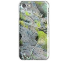 New Mexico iPhone Case/Skin