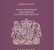 UK Passport  by Nornberg77