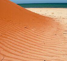Point Peron, Shark Bay  by rachn