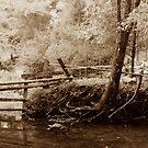 Town Creek by © Joe  Beasley IPA