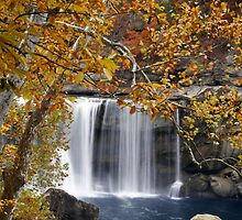 Autumn Falls by Scarlett