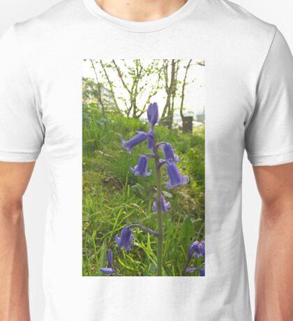 Beautiful bluebells Unisex T-Shirt