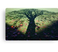 Neath the Shade of the Tree... Canvas Print
