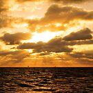 Golden Sunrise by Michael Reimann