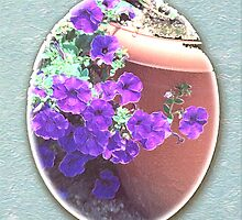 Petunias in a Pot by © CK Caldwell IPA