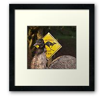 Kangaroos Next 14 km Framed Print