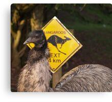 Kangaroos Next 14 km Canvas Print
