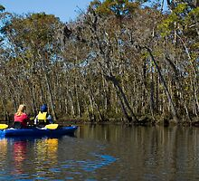 Kayaking on the Suwannee River by Stacey Lynn Payne