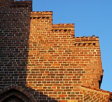 Details of bricks wall background by Ron Zmiri