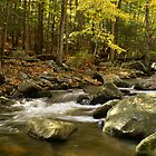 Flowing Waters by Mary Lake