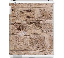 Old stone wall iPad Case/Skin