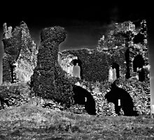 Ballycarbery Castle by Jörg Holtermann
