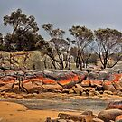 Bay Of Fires 2 by wallarooimages