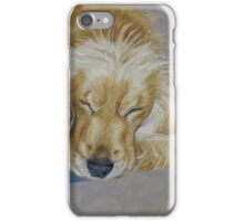Sleeping Pet iPhone Case/Skin