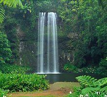 Millaa Millaa Falls, Queensland by Matt  Lauder