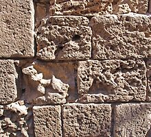 Old sea sand stone wall background by Ron Zmiri
