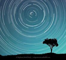 Standing In Stillness  by Stephanie Rachel Seely