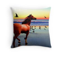 Sunset Run Throw Pillow