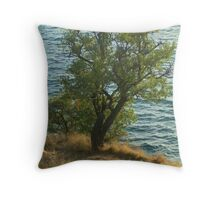 Naturism Throw Pillow