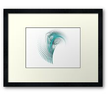 Indian feather adornment Framed Print