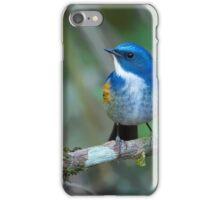 Himalayan Bluetail - Thailand iPhone Case/Skin