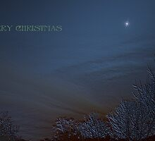 Christmas Blues  by XtomJames
