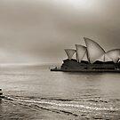 Foggy Sydney by Annette Blattman