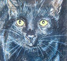 Black Cat by Tonkin