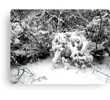 SNOW SCENE 1 Canvas Print
