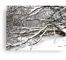 SNOW SCENE 2 Canvas Print