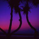 Pinkurple Pandanus by Luke Jones