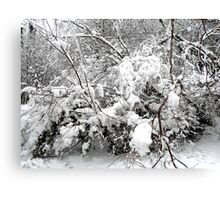 SNOW SCENE 4 Canvas Print