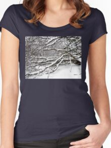 SNOW SCENE 2 Women's Fitted Scoop T-Shirt