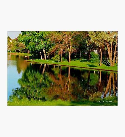 Ponnd Reflections Photographic Print