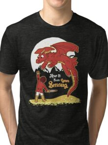 How to Train your Smaug Tri-blend T-Shirt