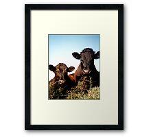 Wayne & Shane Framed Print