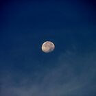 Another Moon, Another Night by Ferguson