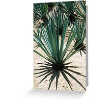 MAMMA TEQUILA Greeting Card