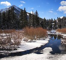 Big Cottonwood Canyon by Gene Praag