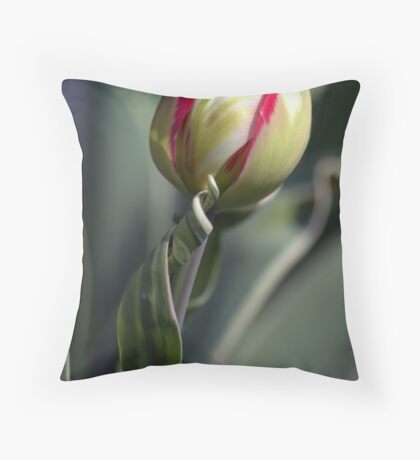 Kenton Glory Throw Pillow