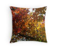 Lasting Autumn  Throw Pillow