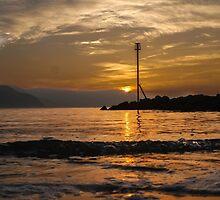 golden light by WillBov