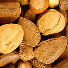Mixed Nuts - Vertical by Elizabeth  Lilja