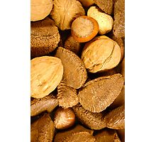 Mixed Nuts - Vertical Photographic Print