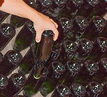 wine bottles in the cellar by spetenfia