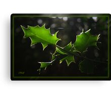 Holly Silhouette Canvas Print