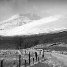 Leach Doire Lochaidh  by PigleT