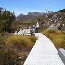 boardwalk at Cradle Mt, Tasmania by gaylene