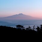 Mount Vesuvius by Varinia   - Globalphotos